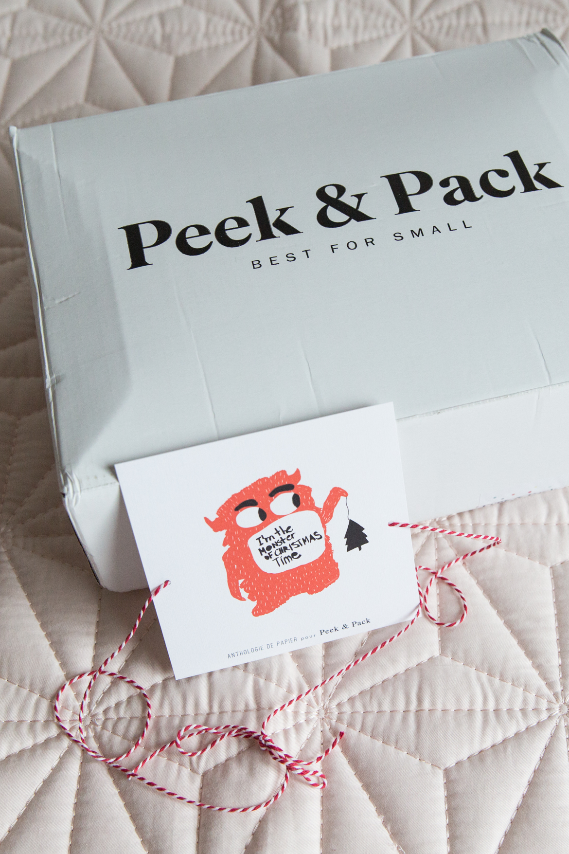 BABY-Peek-and-Pack-2